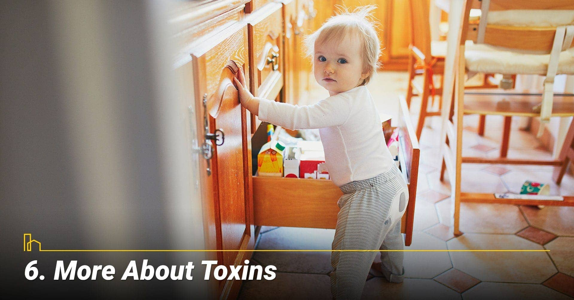 More About Toxins, keep household chemicals out of children reach