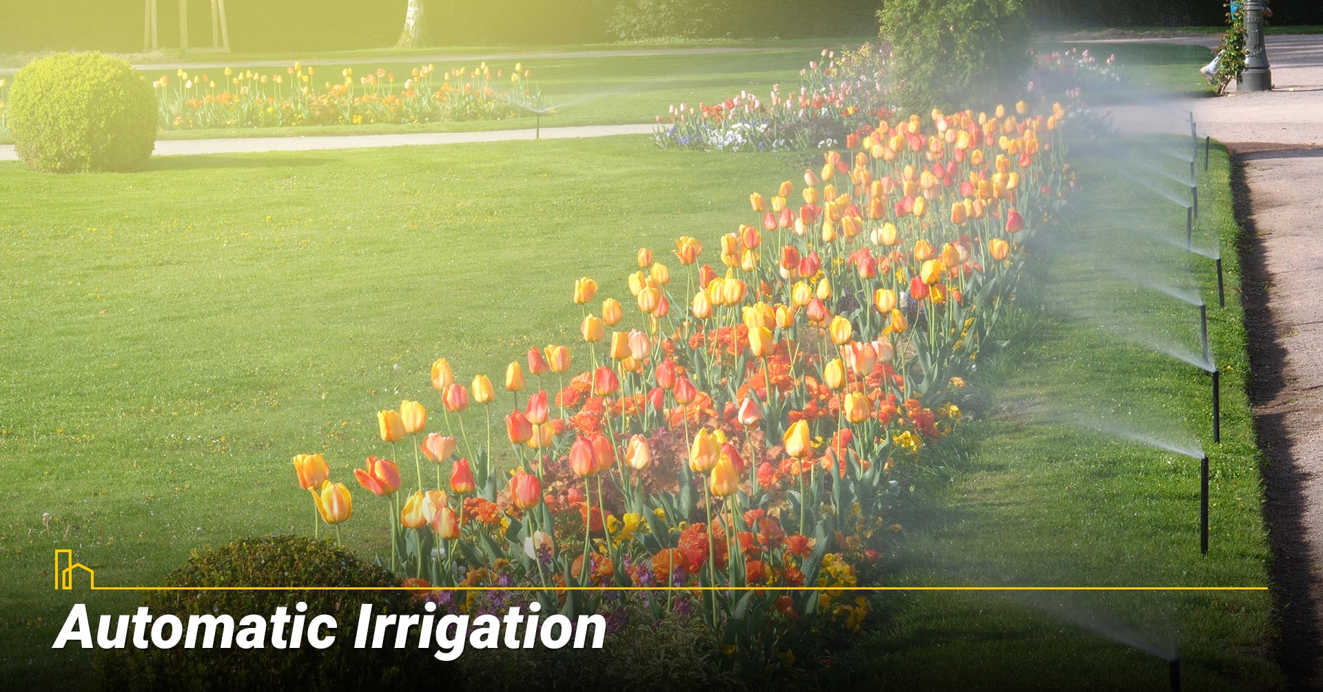 Automatic Irrigation, use automatic system to water your lawn